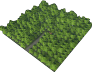 Large Tree Plantation.png