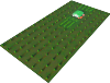 Large Tree Sapling Field.png